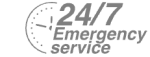 24/7 Emergency Service Pest Control in Mayfair, Marylebone, W1. Call Now! 020 8166 9746